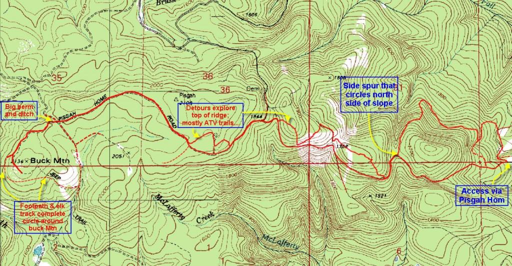 Buck Mountain Loop Forest Hiker