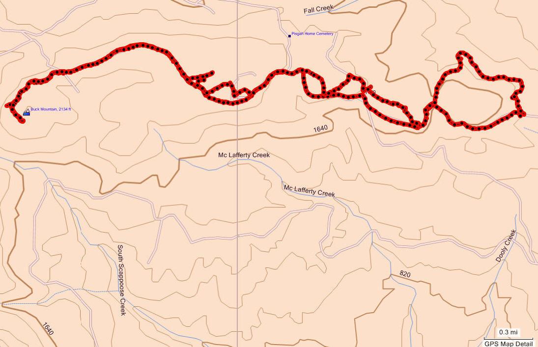 Stone Mountain Elevation Change : Buck mountain loop forest hiker