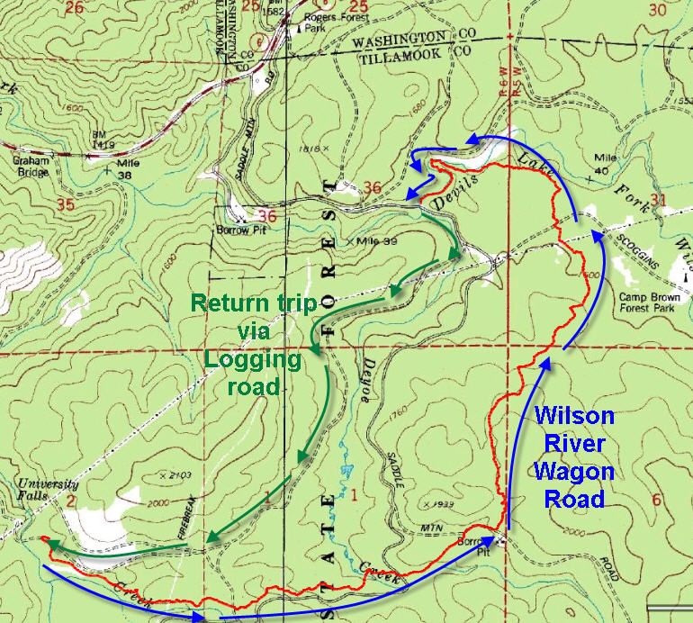 Wilson River Wagon Road Trail Forest Hiker