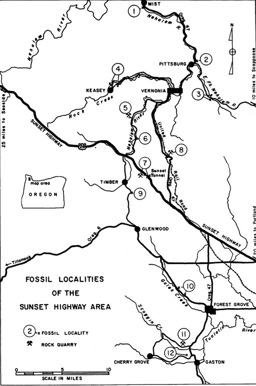 Fossil Hunting Along The Sunset Highway Forest Hiker - Map of oregon highways