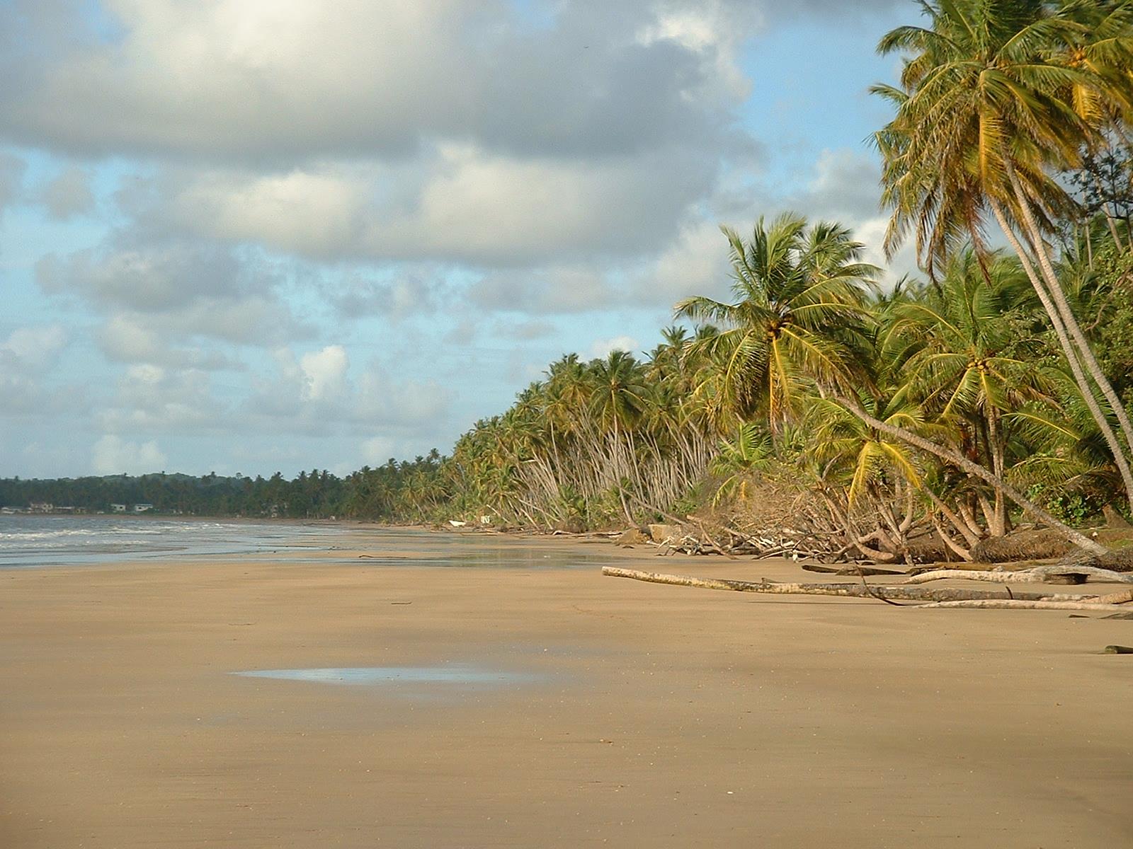 Mayaro_Beach;_Trinidad_&_Tobago